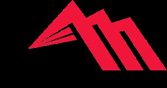 Apex Valve Services Logo